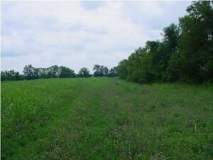 Nice Horse or Cattle Farm, 19.23 Acres