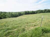 77 acres more or less of level to gently rolling Shelby County land off Mt. Eden Road. The farm is improved with a nice 40 x 110 foot metal barn with an attached 20 x 35 shed. There is also a frame home.  The farm is currently used as a cattle and hay far - 9