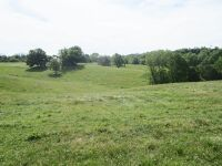 77 acres more or less of level to gently rolling Shelby County land off Mt. Eden Road. The farm is improved with a nice 40 x 110 foot metal barn with an attached 20 x 35 shed. There is also a frame home.  The farm is currently used as a cattle and hay far - 10