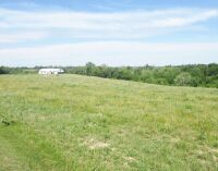77 acres more or less of level to gently rolling Shelby County land off Mt. Eden Road. The farm is improved with a nice 40 x 110 foot metal barn with an attached 20 x 35 shed. There is also a frame home.  The farm is currently used as a cattle and hay far - 12