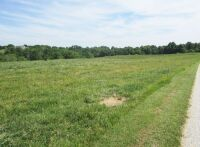 77 acres more or less of level to gently rolling Shelby County land off Mt. Eden Road. The farm is improved with a nice 40 x 110 foot metal barn with an attached 20 x 35 shed. There is also a frame home.  The farm is currently used as a cattle and hay far - 13