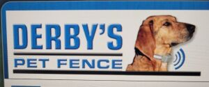 Derby Pet Fence, one collar, up to 1/2 acre of under ground pet fencing. This is valued up to $1,400 and donated by Steve Baralt of Derby Pet Fence Company. Many thanks to this company.