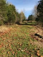 Private, wooded 2.2 acre lot in great location.  This lot lays level and has woods for privacy, in a well established neighborhood in Shepherdsville, KY.  City water and electric are at the lot and just minutes to city of Shepherdsville or Bardstown Road.